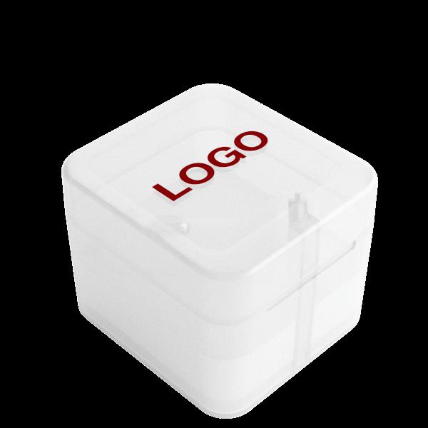 Vista - Personalisiertes KFZ Ladegerät